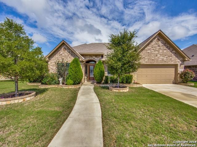 14619 Bearberry Pass, San Antonio, TX 78254 (MLS #1342126) :: The Suzanne Kuntz Real Estate Team