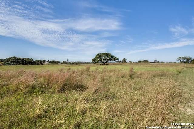 1609 Us Highway 181 N, Floresville, TX 78114 (MLS #1342258) :: The Castillo Group