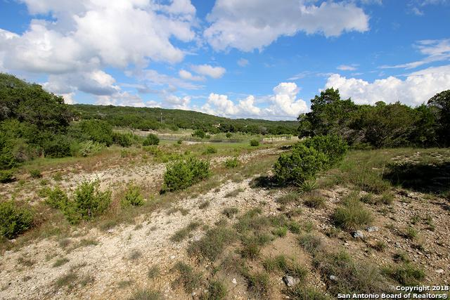 6460 Cheyenne Pass, Bulverde, TX 78163 (MLS #1342278) :: BHGRE HomeCity