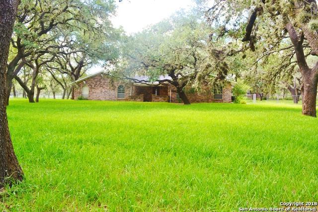 113 Cynthia Dr, Pleasanton, TX 78064 (MLS #1342294) :: Alexis Weigand Real Estate Group