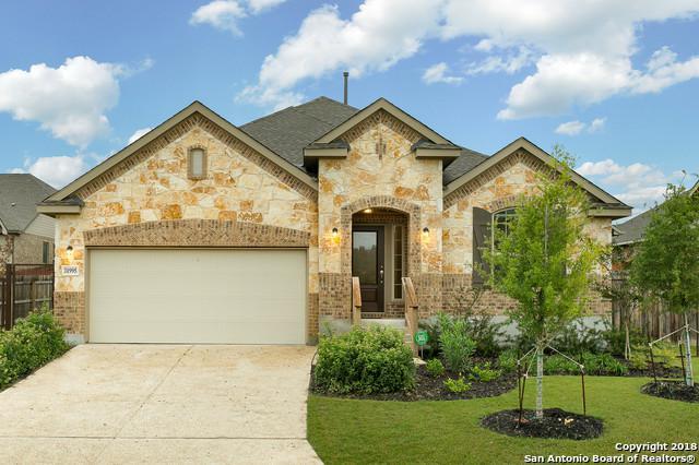 31995 Cast Iron Cv, Bulverde, TX 78163 (MLS #1342433) :: The Suzanne Kuntz Real Estate Team