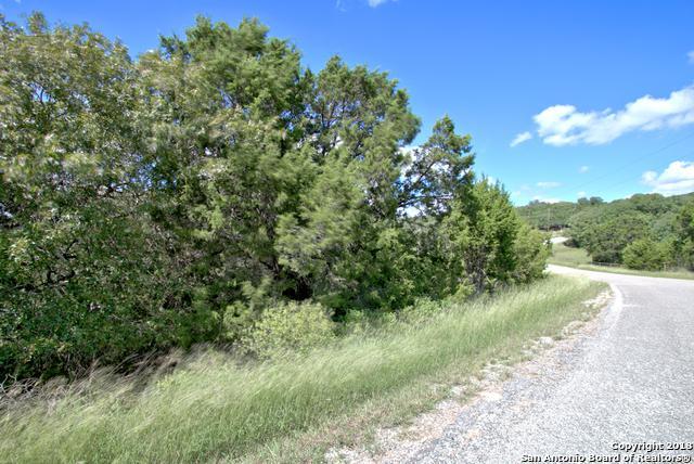 154 Calm Water, Canyon Lake, TX 78133 (MLS #1342491) :: Exquisite Properties, LLC