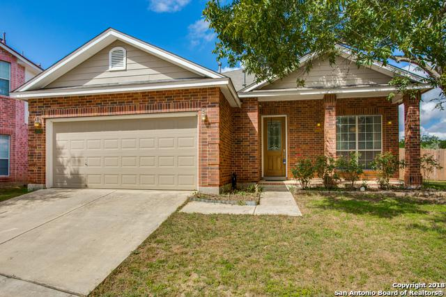 10519 Avalon View, San Antonio, TX 78240 (MLS #1342641) :: Vivid Realty