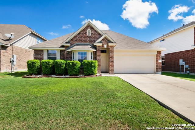169 Niemietz Cove, Cibolo, TX 78108 (MLS #1342700) :: The Suzanne Kuntz Real Estate Team