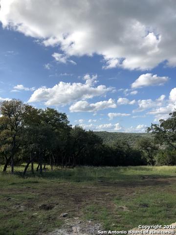 157 Ash Juniper Dr, New Braunfels, TX 78132 (MLS #1342859) :: Erin Caraway Group