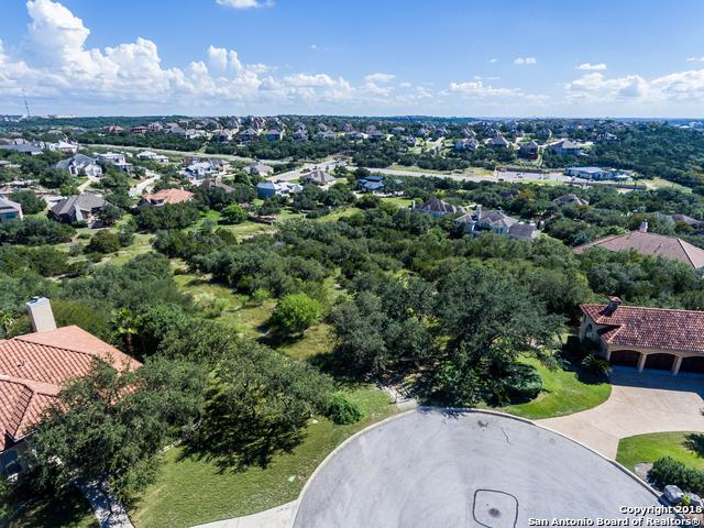 24802 Parview Circle, San Antonio, TX 78260 (MLS #1342894) :: The Castillo Group