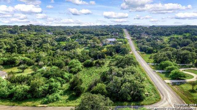 100 Falling Hills, New Braunfels, TX 78132 (MLS #1342898) :: The Suzanne Kuntz Real Estate Team