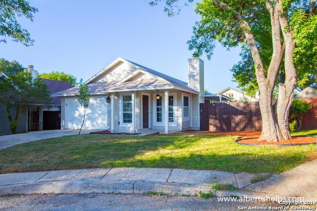 3331 Stoney Briar, San Antonio, TX 78247 (MLS #1343084) :: Magnolia Realty