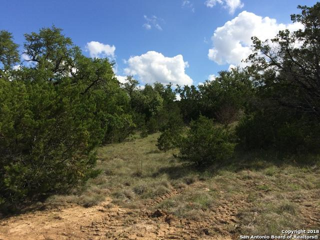 272 Primrose Path, Canyon Lake, TX 78133 (MLS #1343104) :: Alexis Weigand Real Estate Group