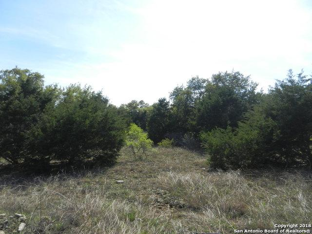 1307 (LOT 1221) Capitare, New Braunfels, TX 78132 (MLS #1343154) :: Magnolia Realty