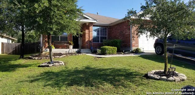 230 Wing Falls, San Antonio, TX 78253 (MLS #1343180) :: Exquisite Properties, LLC