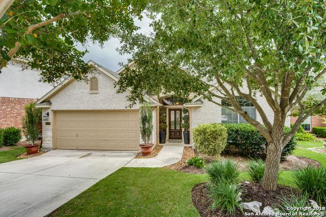 24018 Briarbrook Way, San Antonio, TX 78261 (MLS #1343348) :: Tom White Group