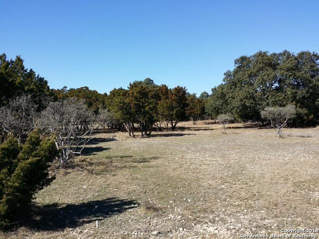 3157 Split Rock Circle, Bulverde, TX 78163 (MLS #1343359) :: Ultimate Real Estate Services