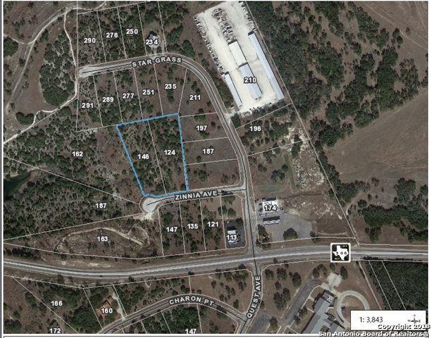 146 Zinnia Ave, Spring Branch, TX 78070 (MLS #1343432) :: Exquisite Properties, LLC