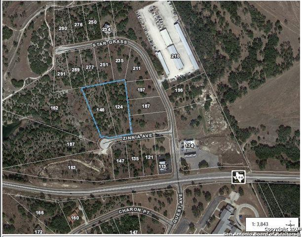 146 Zinnia Ave, Spring Branch, TX 78070 (MLS #1343432) :: Tom White Group