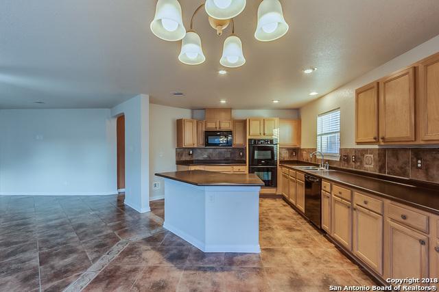 125 Springtree Cove, Cibolo, TX 78108 (MLS #1343477) :: Exquisite Properties, LLC