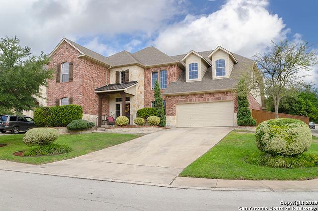 103 Red Alder Trail, San Antonio, TX 78256 (MLS #1343544) :: Alexis Weigand Real Estate Group