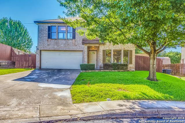 15423 Spring Mist, San Antonio, TX 78247 (MLS #1343621) :: Alexis Weigand Real Estate Group