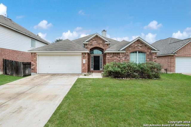 21006 Encino Dawn, San Antonio, TX 78259 (MLS #1343759) :: Exquisite Properties, LLC
