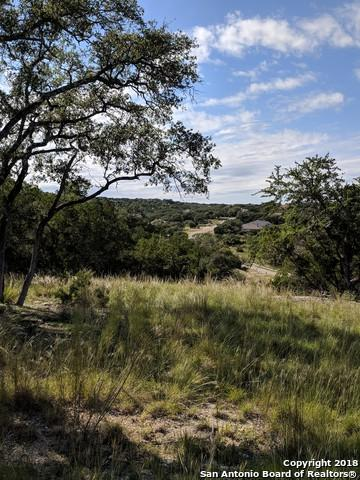 519 Shortcut Pass, Canyon Lake, TX 78133 (MLS #1343977) :: Ultimate Real Estate Services