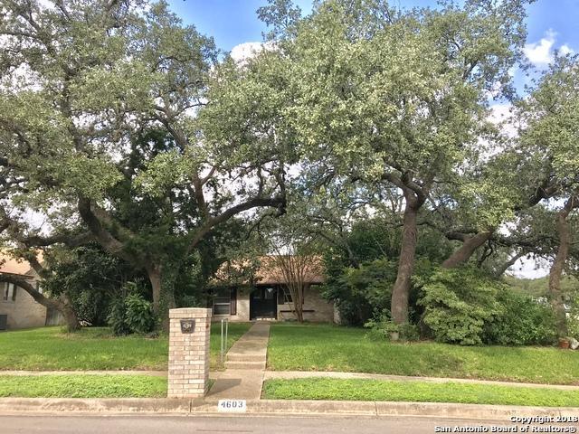 4603 Midnight Woods St, San Antonio, TX 78249 (MLS #1344036) :: Erin Caraway Group