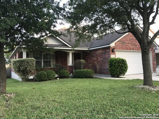 3642 Sumantra Cliff, San Antonio, TX 78261 (MLS #1344038) :: Magnolia Realty