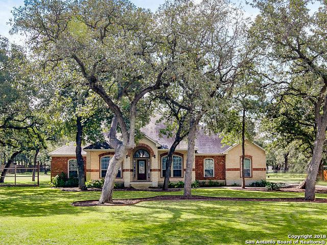 141 Legacy Trace, La Vernia, TX 78121 (MLS #1344143) :: Erin Caraway Group