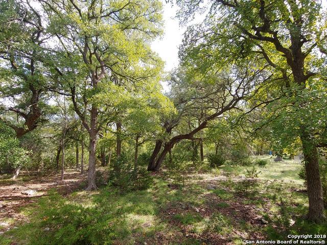 433 Hanging Oak, Spring Branch, TX 78070 (MLS #1344177) :: Erin Caraway Group