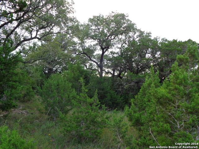 110 & 128 Prairie Tea, Canyon Lake, TX 78133 (MLS #1344246) :: Neal & Neal Team