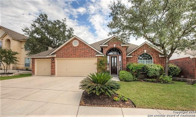 27042 Trinity Heights, San Antonio, TX 78261 (MLS #1344301) :: The Suzanne Kuntz Real Estate Team