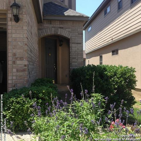 1314 Tweed Willow, San Antonio, TX 78258 (MLS #1344311) :: Exquisite Properties, LLC