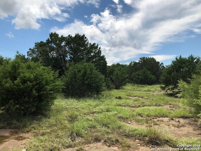 140 Mallard Dr, Boerne, TX 78006 (MLS #1344495) :: The Mullen Group | RE/MAX Access