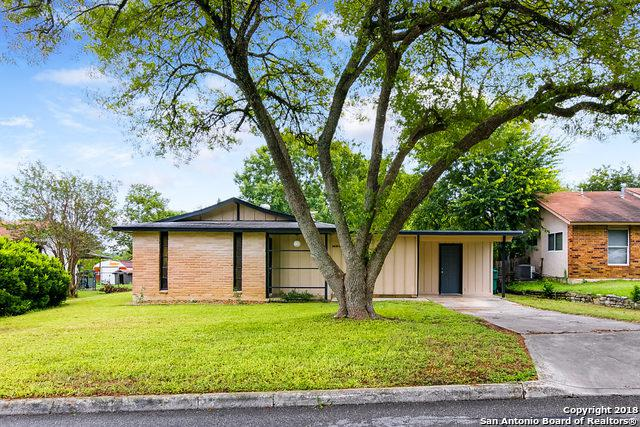 110 Little Oaks St, Live Oak, TX 78233 (MLS #1344699) :: Exquisite Properties, LLC