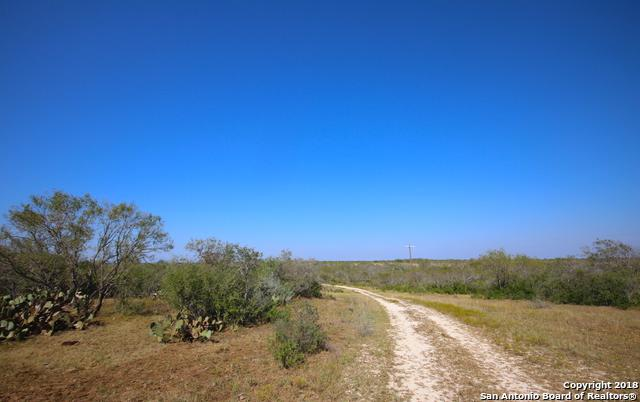 2040 County Road 134, Floresville, TX 78114 (MLS #1345063) :: The Castillo Group