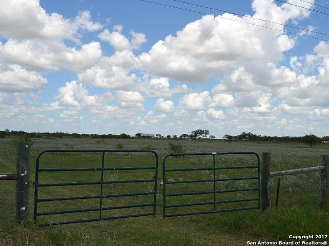 590 W Tank Hollow Rd, Poteet, TX 78065 (MLS #1345276) :: Magnolia Realty