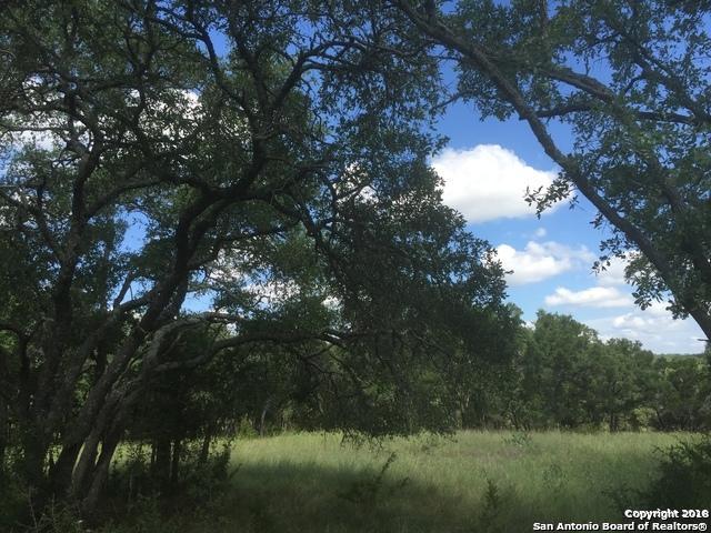 2677 Palomino Springs, Bandera, TX 78003 (MLS #1345402) :: Magnolia Realty