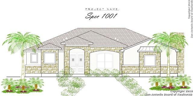 11217 Obrien Rd, Atascosa, TX 78002 (MLS #1345424) :: Neal & Neal Team