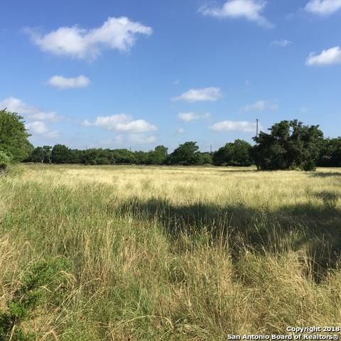 134 Garden St, Boerne, TX 78006 (MLS #1345942) :: Exquisite Properties, LLC