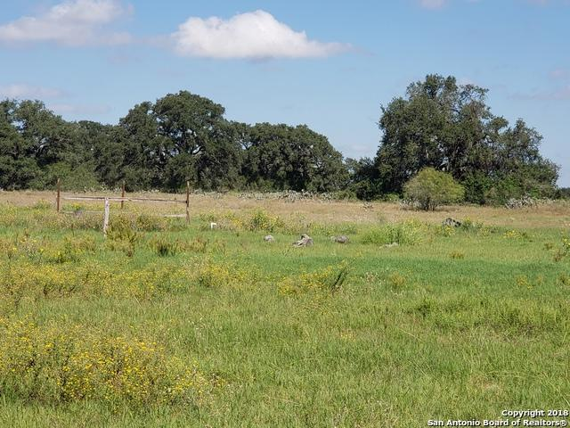 20 Cr 7711, Devine, TX 78016 (MLS #1346278) :: Alexis Weigand Real Estate Group