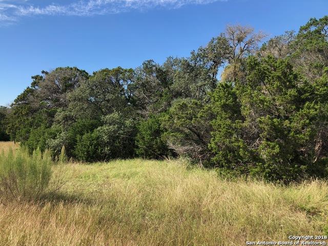 2217 (LOT 603) Appellation, New Braunfels, TX 78132 (MLS #1346284) :: The Suzanne Kuntz Real Estate Team