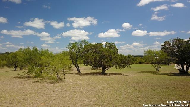 L2 Old Vine, Fredericksburg, TX 78624 (MLS #1346500) :: Exquisite Properties, LLC