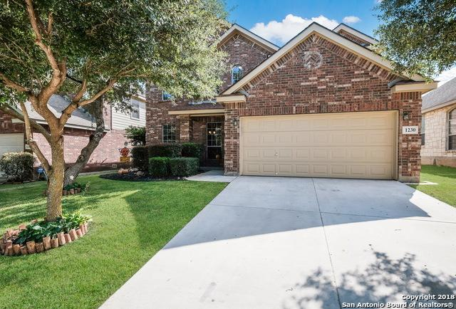 1230 Ganton Ln, San Antonio, TX 78260 (MLS #1346573) :: The Suzanne Kuntz Real Estate Team