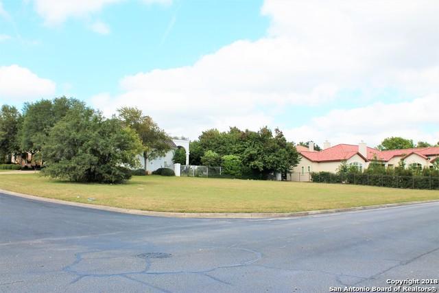2 Kings Ml, San Antonio, TX 78257 (MLS #1346686) :: Alexis Weigand Real Estate Group
