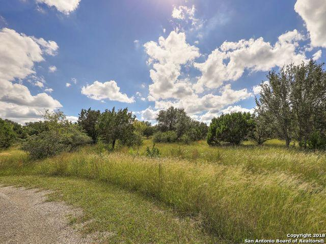 113 Valley Knoll, Boerne, TX 78006 (MLS #1346839) :: The Suzanne Kuntz Real Estate Team