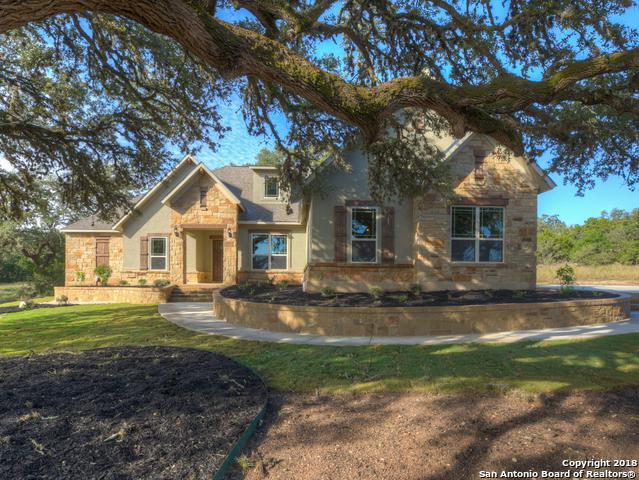 1353 Merlot, New Braunfels, TX 78132 (MLS #1347039) :: The Suzanne Kuntz Real Estate Team