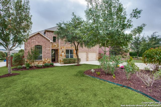 21618 Chaucer Hill, San Antonio, TX 78256 (MLS #1347260) :: Alexis Weigand Real Estate Group