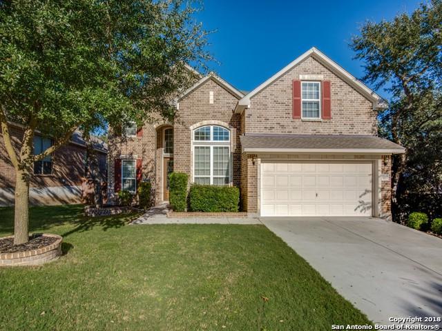 12115 Chambers Cove, San Antonio, TX 78253 (MLS #1347295) :: Exquisite Properties, LLC