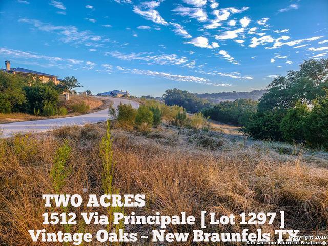1512 Via Principale, New Braunfels, TX 78132 (MLS #1347385) :: The Suzanne Kuntz Real Estate Team