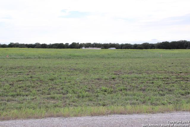 213 Colonial Ln, La Vernia, TX 78121 (MLS #1347696) :: Alexis Weigand Real Estate Group