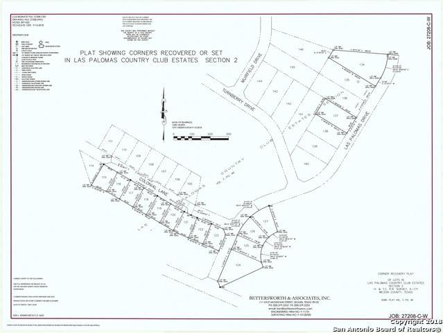 102 Las Palomas Dr, La Vernia, TX 78121 (MLS #1347701) :: Alexis Weigand Real Estate Group